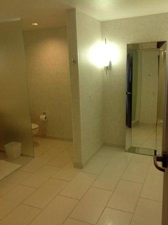 Palms Casino Resort : no bath tub?