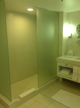 Palms Casino Resort : no shelf in shower and tile not so clean