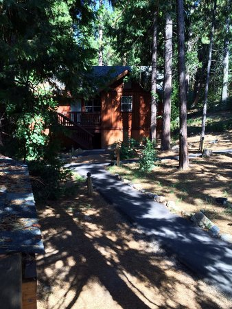 Evergreen Lodge at Yosemite: View of a cabin in the Cedars section of the resort.