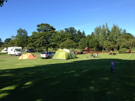 Mortonhall Caravan and Camping Park: Our tent