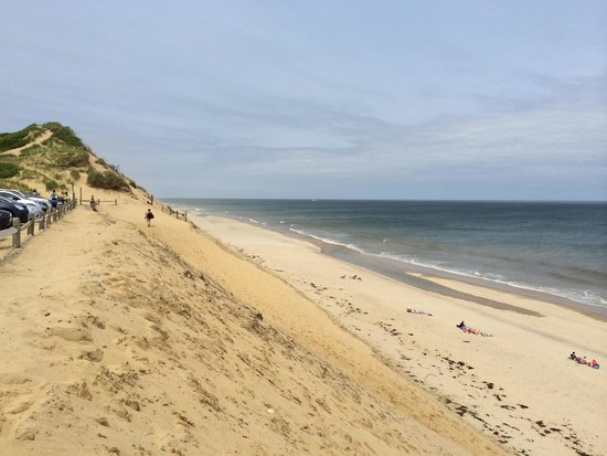 Wellfleet Beachcomber : Beachcomber parking lot view
