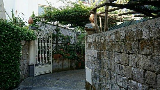 Relais Villa Angiolina: the way to the hotel