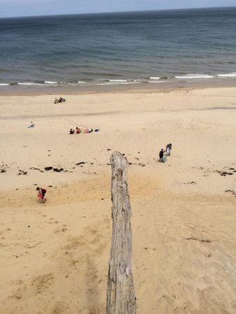 Wellfleet Beachcomber : The log in the dune, walk the plank