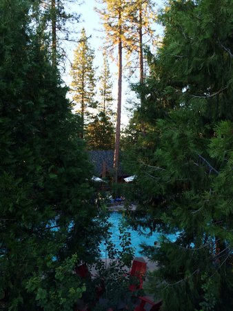 Evergreen Lodge at Yosemite: Looking into pool area from Cedar 10 deck (~ north).