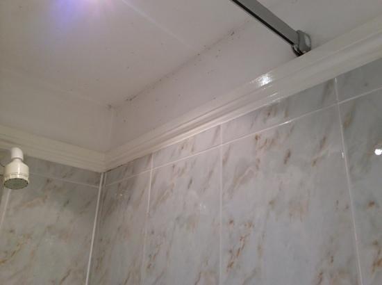 Cedars Inn: mouldy bathroom
