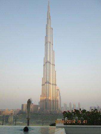 Sofitel Dubai Downtown : VUE BURJ KHALIFA DEPUIS LA PISCINE