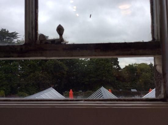 Cedars Inn: omg filthy windows
