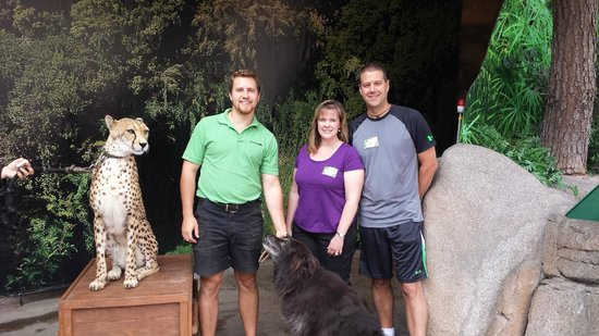 San Diego Zoo : Meeting a cheetah!