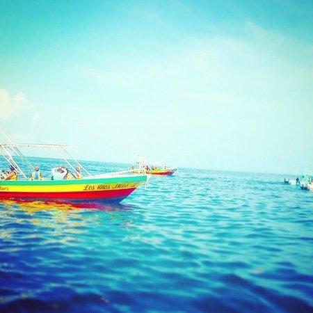 Villas HM Paraiso del Mar: Our photos of Villas Paraiso del Mar