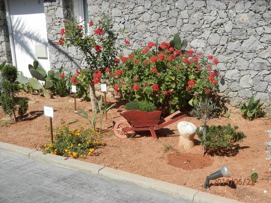 Civitel Creta Beach: les jardins de l'hôtel