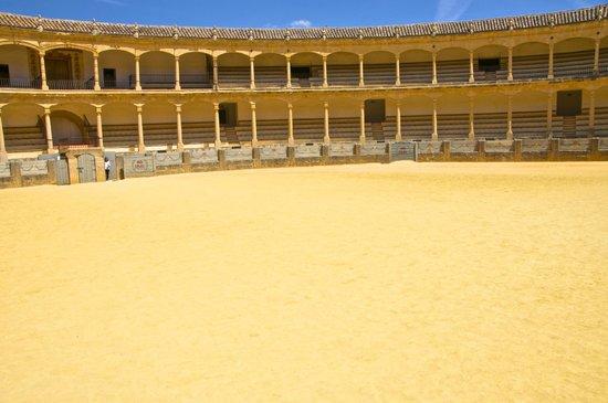 Plaza de Toros : RING FROM BULLS VIEW