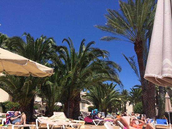 ClubHotel Riu Oliva Beach Resort : Traumwetter