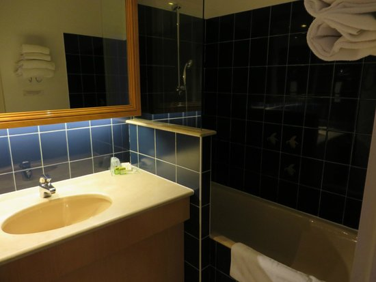 Le Relais du Roy : shower/sink area