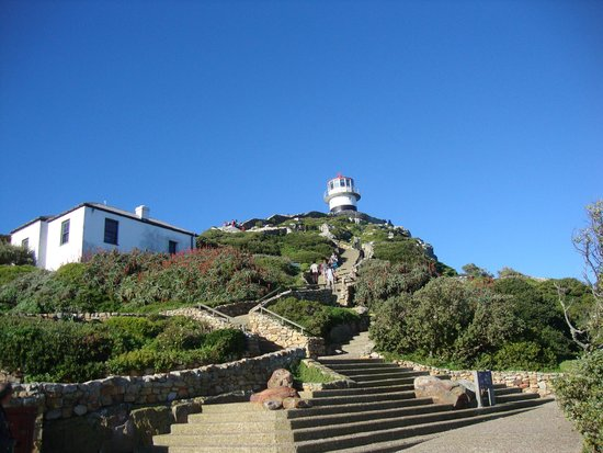Cape of Good Hope: Cape 4