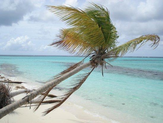 Shoal Bay Village, Anguilla: Excepcional