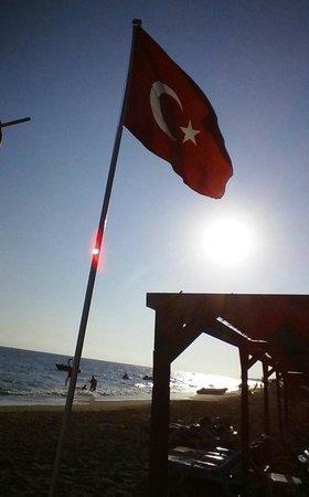 Otium Hotel Seven Seas : beach