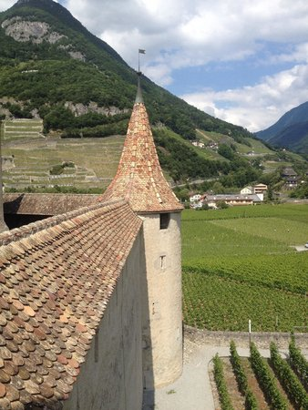 Aigle Castle: Lovely view of vineyards