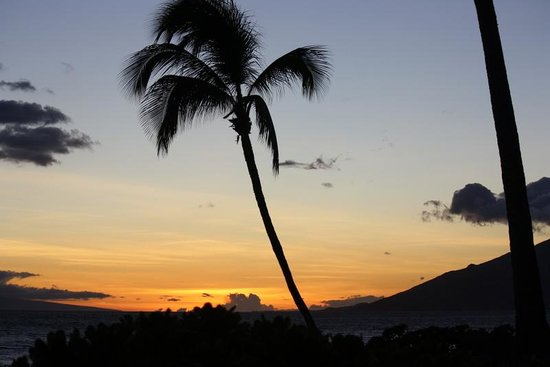 Dolphins Point Maui: Beach House Paradise
