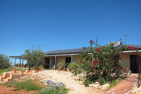Ningaloo Bed & Breakfast: Outside of BnB