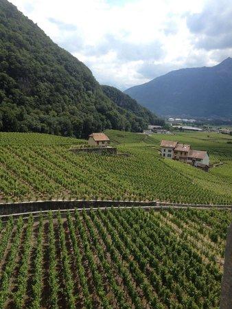 Aigle Castle: View from the top