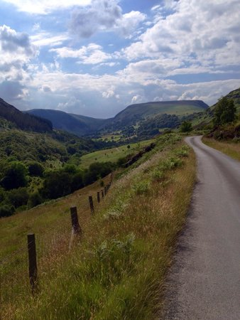 Gilfach Nature Reserve: View towards the A470