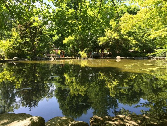 Lithia Park : Duck Pond