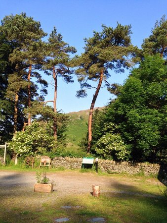Gilfach Nature Reserve: The old farmyard