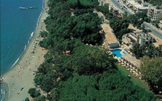 Park Beach Hotel: Пляж и рядом настоящие кипарисы!