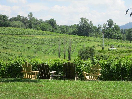 Crane Creek Vineyards: Sit back and relax while looking at the vineyard.