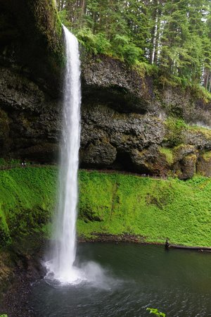 Silver Falls State Park: South Falls