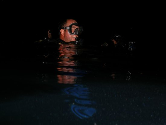 Cayman Turtle Divers: Drew Guiding a night dive