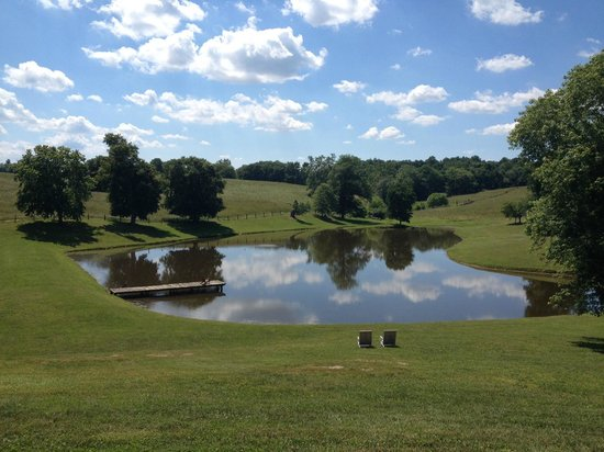 Greenhill Winery and Vineyards: lake on the property