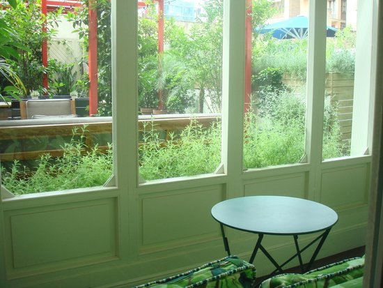 Praktik Garden: Terrace through window