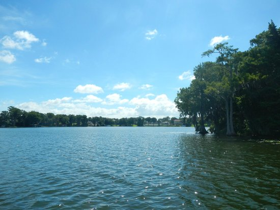 Scenic Boat Tour : Lake view