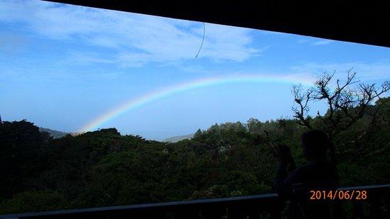 Hotel Belmar: Rainbow