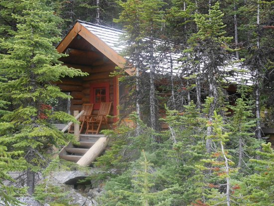 Lake O'Hara Lodge: typical cabin