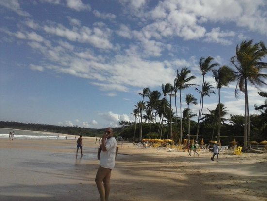 Coqueiros Beach: Vista