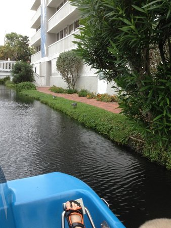 TradeWinds Island Grand Resort : paddleboat river