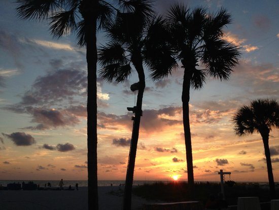 TradeWinds Island Grand Resort : sunset