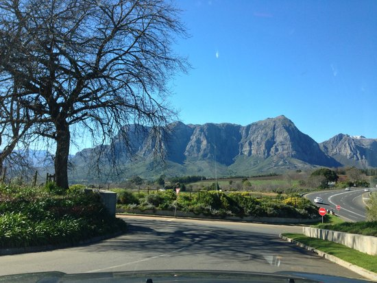 Waterford Estate : View of Table mountain from Stellenbosch