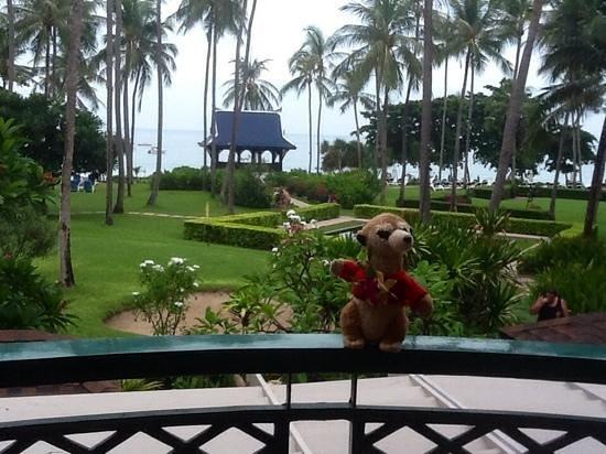 Centara Grand Beach Resort Samui : our merv on the balcony