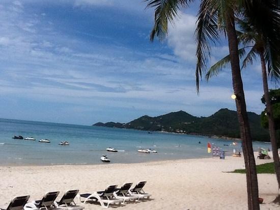 Centara Grand Beach Resort Samui : the lovely beach