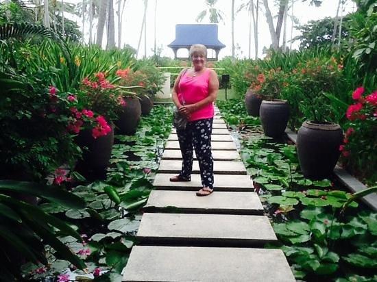 Centara Grand Beach Resort Samui : the beautiful gardens