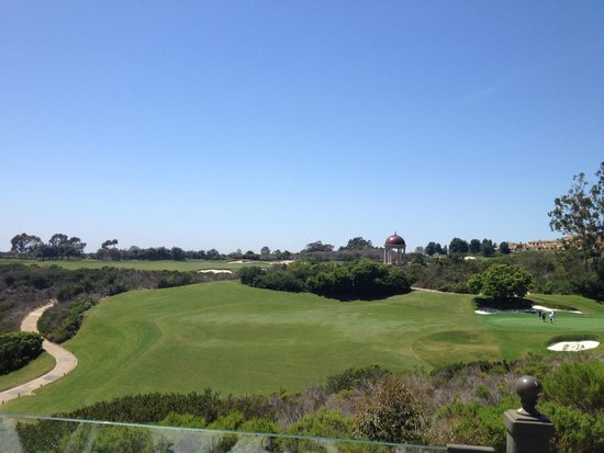 The Resort at Pelican Hill : View from the pool