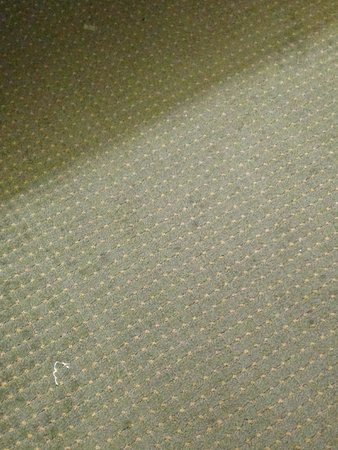 Quality Inn Norfolk Naval Base: dirty stained carpet