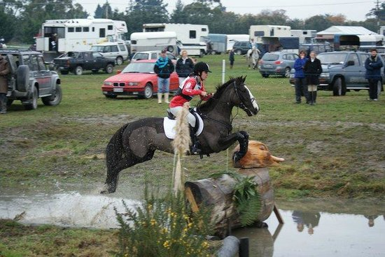 Kowhai Residential School of Riding Ltd: Bamboozle, Rangiora Event 2010