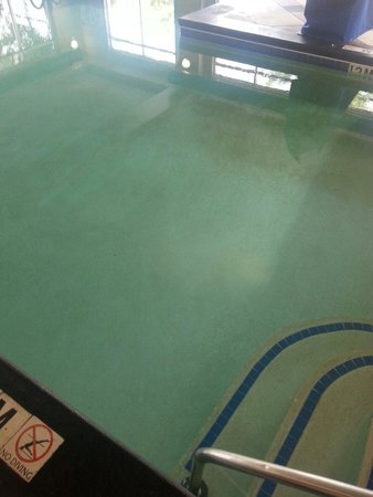 Homewood Suites by Hilton Columbia : Pool stains