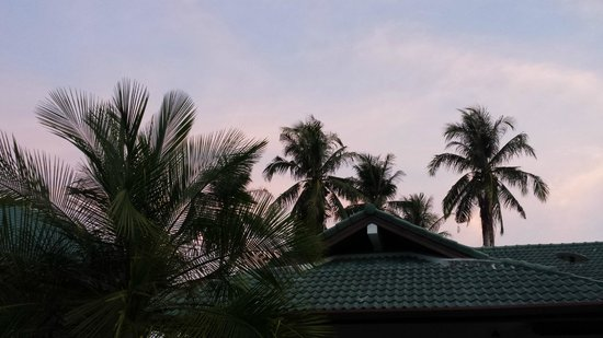 Ya Nui Resort: Blick aus meinem Zimmer