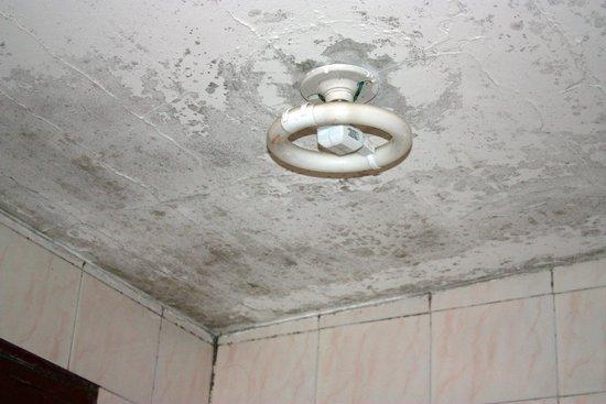Hacienda La Cienega: ceiling in bathroom!