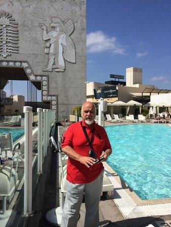 Loews Hollywood Hotel: The pool area